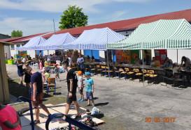 Zakończyły się dni otwarte Galerii Dziecięcej POKUSA w Chełmie