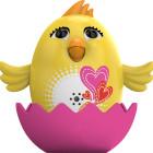 Digi Chicks