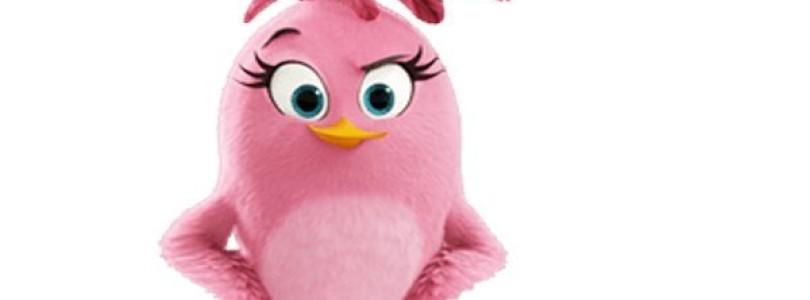 Gandalf dystrybutorem maskotek Angry Birds