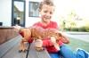 Jurassic World – Atakujący T-Rex
