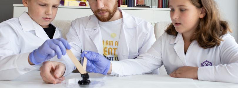 SMARTBEE: Firma, która eksperymentuje… bez eksperymentowania